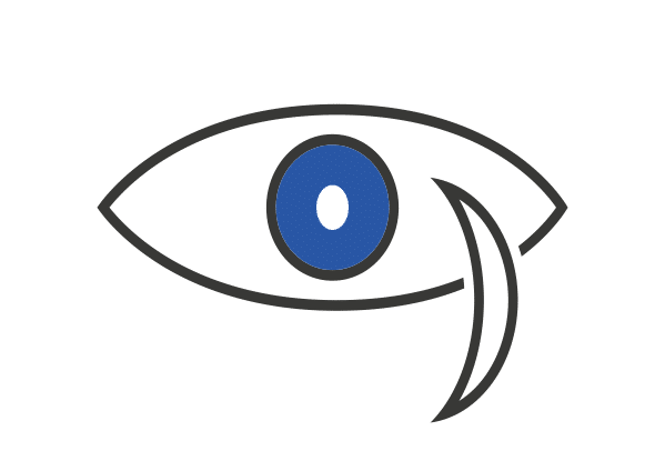 Garmin Night Vision Icon